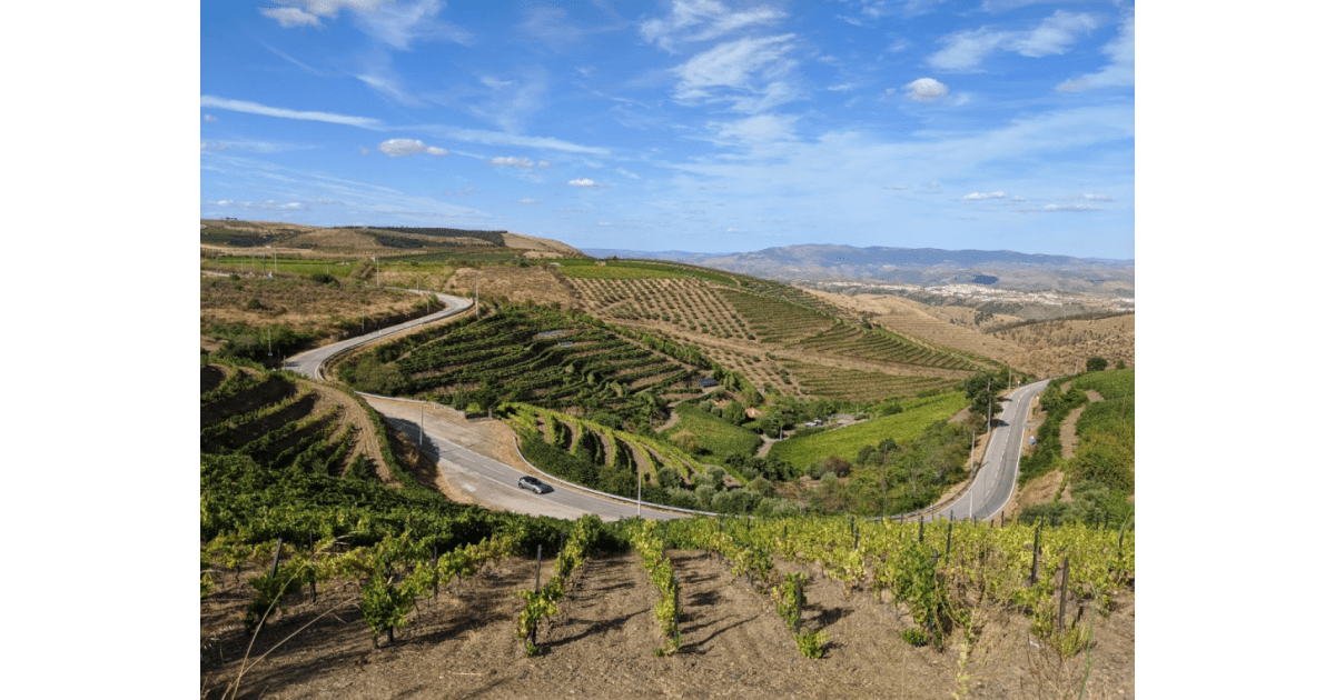 Douro Valley-david-magalhaes